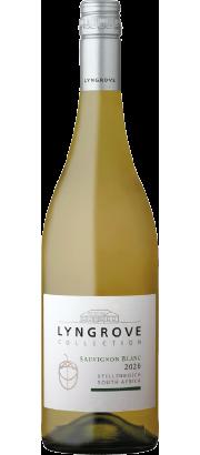 Lyngrove Collection Sauvignon Blanc